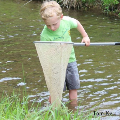 15_Kids_Pond Netting_Tom Kerr